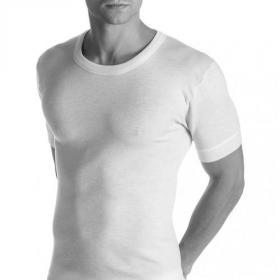 Maglia lana e seta intima uomo manica corta 85% pura lana vergine e 15% pura seta irrestringibile Madiva ALGHERO